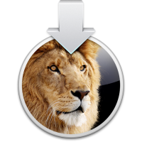 Lion-Clean설치.png
