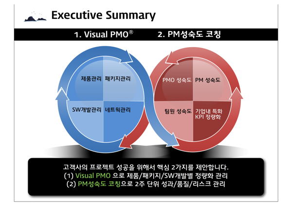 Visual PMO 02