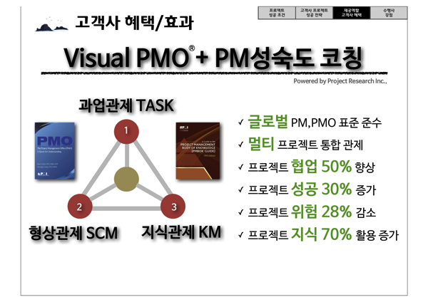 Visual PMO 16