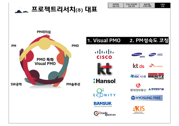 Visual PMO 17