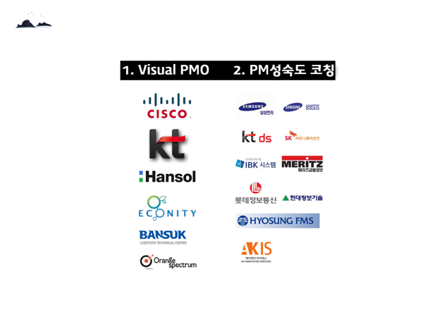 PMO Image 010