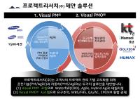 Visual-PMOVisual-PMO-02.png
